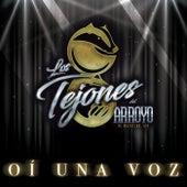 Oí Una Voz by Los Tejones Del Arroyo