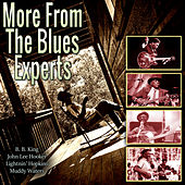 More From The Blues Experts by Various Artists
