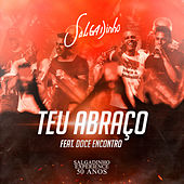 Teu Abraço by Salgadinho