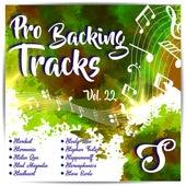 Pro Backing Tracks S, Vol.22 by Pop Music Workshop