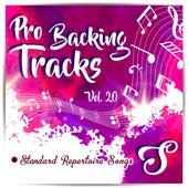 Pro Backing Tracks S, Vol.20 by Pop Music Workshop