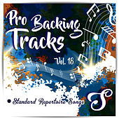 Pro Backing Tracks S, Vol.18 by Pop Music Workshop