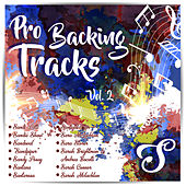 Pro Backing Tracks S, Vol.2 by Pop Music Workshop