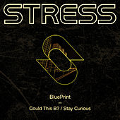 Could This B? / Stay Curious de Blueprint