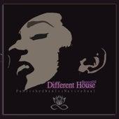 Different House Record10 de Various Artists