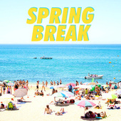 Spring Break de Various Artists