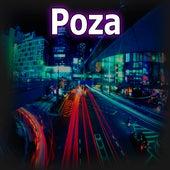 Danone by Poza