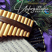 Unforgettable Pan Pipes von Sebastián Vargas