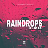 Raindrops (Remix) von Dj Panda Boladao