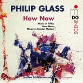 Glass: How Now by Steffen Schleiermann