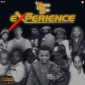The Experience van BMore Ben