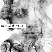 Day At The Spa - Relaxing Sounds To Chill Out, Unwind And Deep Relax by Pure Spa Massage Music