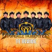 Te Olvide by Pongale Pariente