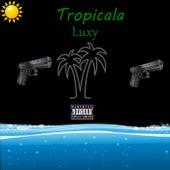 Tropicala de Lüxy