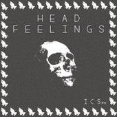 Head Feelings de ICSmx