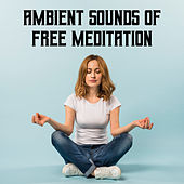Ambient Sounds of Free Meditation - Soft Energy Music, Serenity and Balance, Asian Zen Meditation, Training Your Brain, Deep Concentration, Awaken Your Energy, Corepower Yoga de Ambient Music Therapy