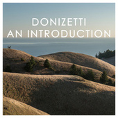 Donizetti: An Introduction von Gaetano Donizetti