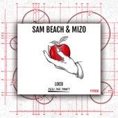 Loco von Sam Beach