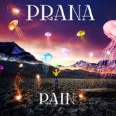 Rain by Prana