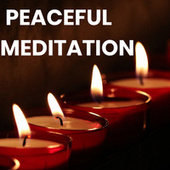 PEACEFUL MEDITATION 2020 fra Various Artists