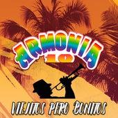 Viejitos Pero Bonitos by Armonia 10