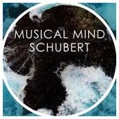 Musical Mind Schubert von Franz Schubert