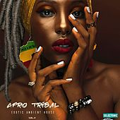 Afro Tribal: Exotic Ambient House, Vol. 2 de John Toso