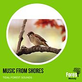 Music from Shores - Tidal Forest Sounds de Various
