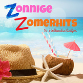 Zonnige Zomerhits 1 van Various Artists