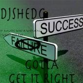 Gotta Get It Right de DJShedG