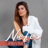 Ureyim by Nefes