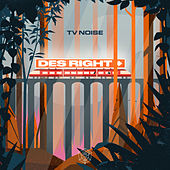 Des Right (Extended Mix) de TV Noise