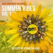 Summer Vibes vol.1 de Various Artists