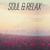 Soul & Relax by Various Artists
