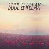 Soul & Relax de Various Artists
