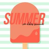 Summer Ice Oldies Summer von Various Artists