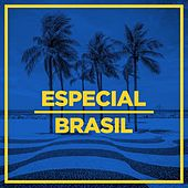 Especial Brasil de Various Artists