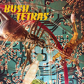 There Is a Hum by Bush Tetras