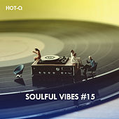 Soulful Vibes, Vol. 15 by Hot Q