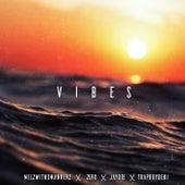 Vibes (feat. Trapboybeni, Zero & Melzwitnomannerz) de JayDee