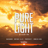 Pure Light de Various Artists