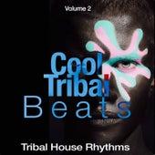 Cool Tribal Beats, Vol. 2 (Tribal House Rhythms) by Various Artists