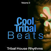 Cool Tribal Beats, Vol. 3 (Tribal House Rhythms) di Various Artists