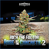 Rose Out  The Concrete 2 by Rich The Factor