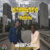 Stranger in Town von Ray Isaacs