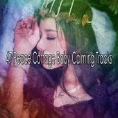 47 Peace Cottage Baby Calming Tracks de Sleepy Night Music