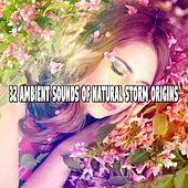 32 Ambient Sounds Of Natural Storm Origins by Rain Sounds and White Noise
