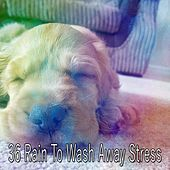 36 Rain To Wash Away Stress by Relaxing Rain Sounds