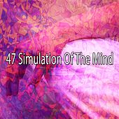 47 Simulation of the Mind de massage