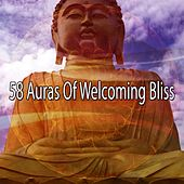 58 Auras Of Welcoming Bliss de Zen Meditate